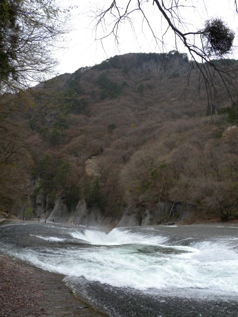 20140427ashikaga 186