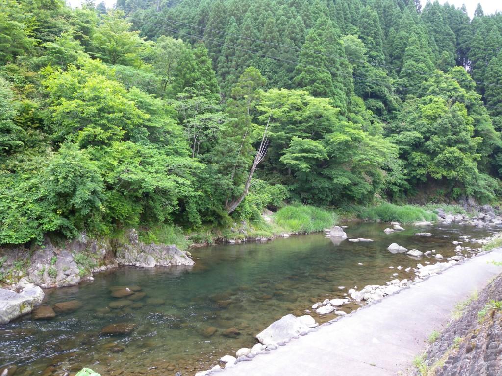 20140607kikuchi 010